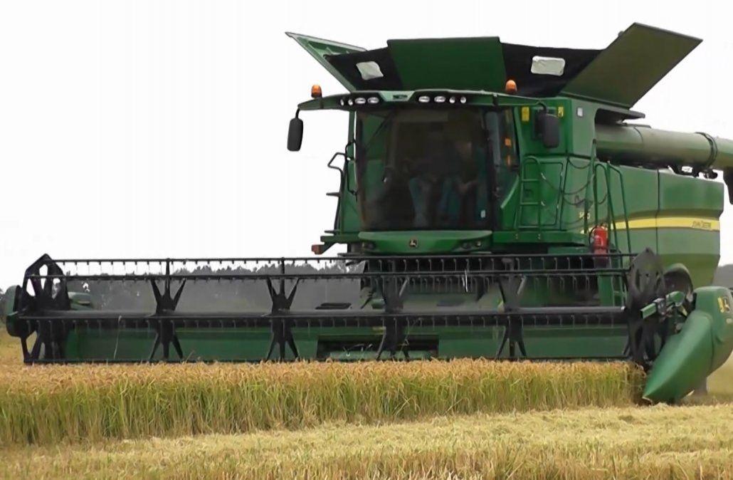 Crisis no hay en el sector agropecuario, aseguró el ministro Astori