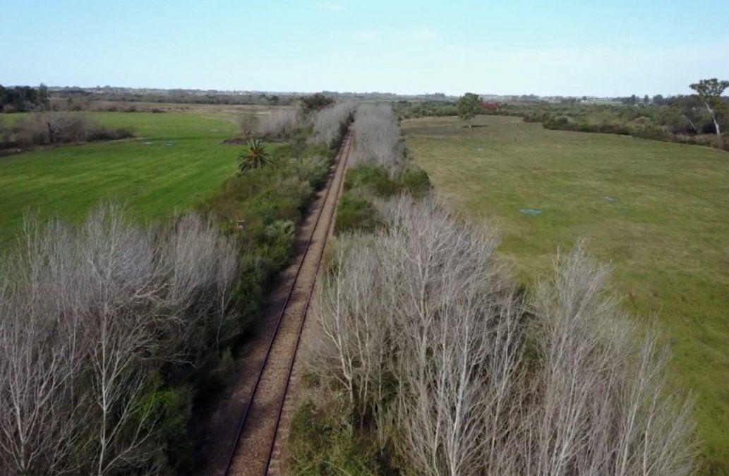 MTOP suspendió la apertura de sobres de la licitación del Ferrocarril Central