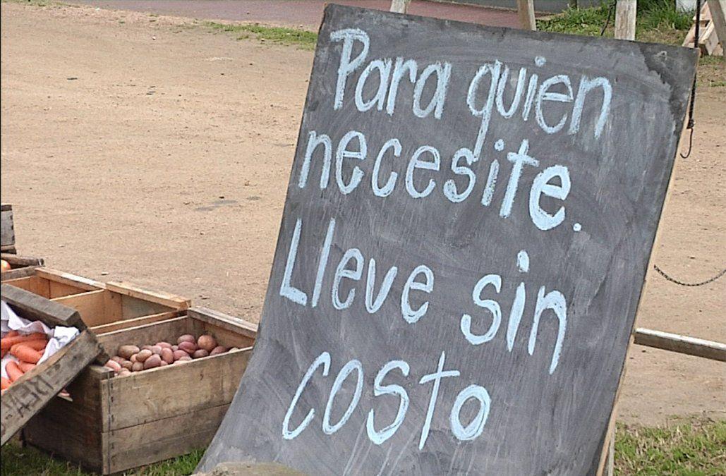 Ofrecen frutas y verduras gratis para ayudar a familias con bajos recursos