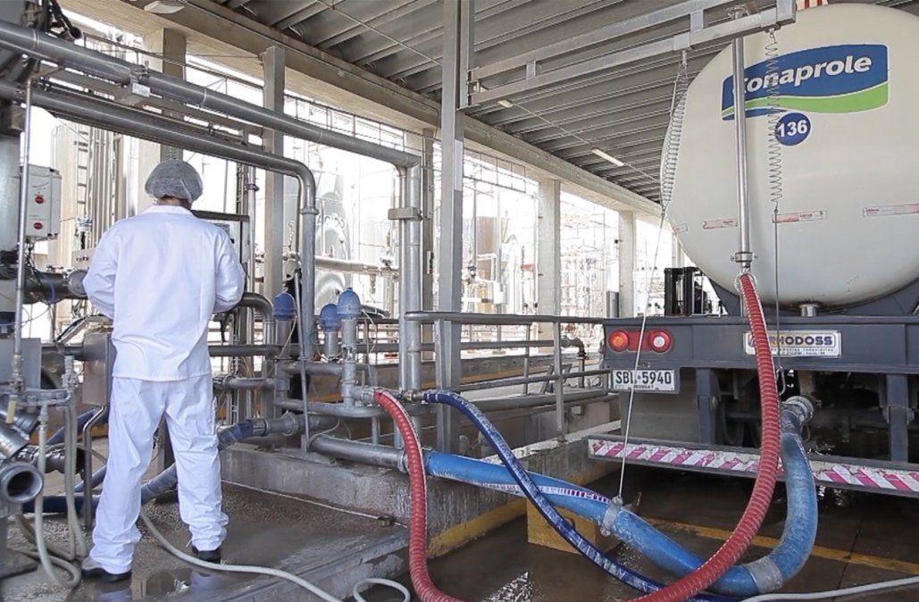 Sindicato de la industria láctea extiende el conflicto a todas las empresas