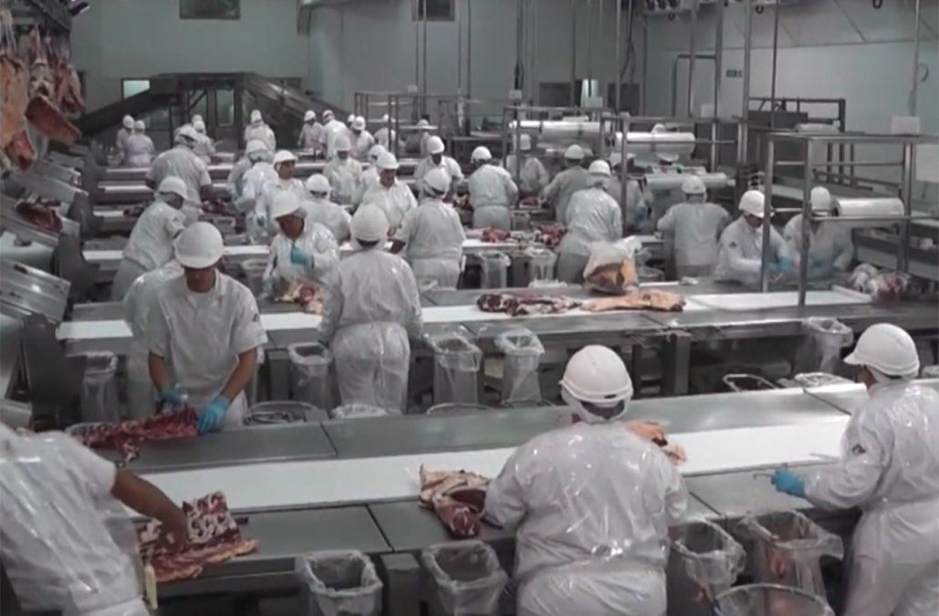 Carne uruguaya reingresará al mercado japonés