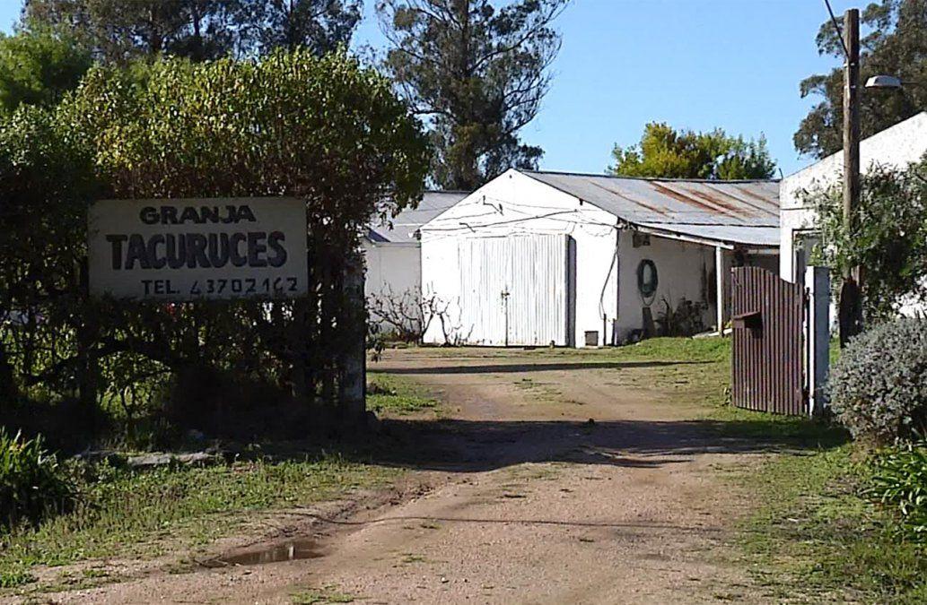 Investigan asesinato de un joven en una granja de Salinas
