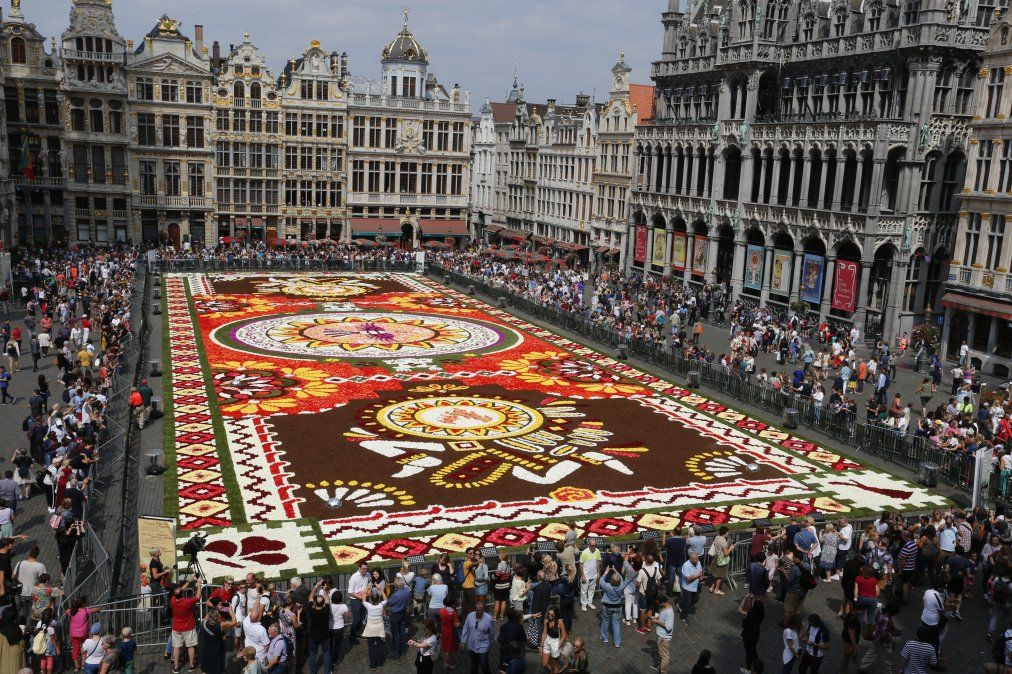 Se instaló la alfombra floral en la Grand Place