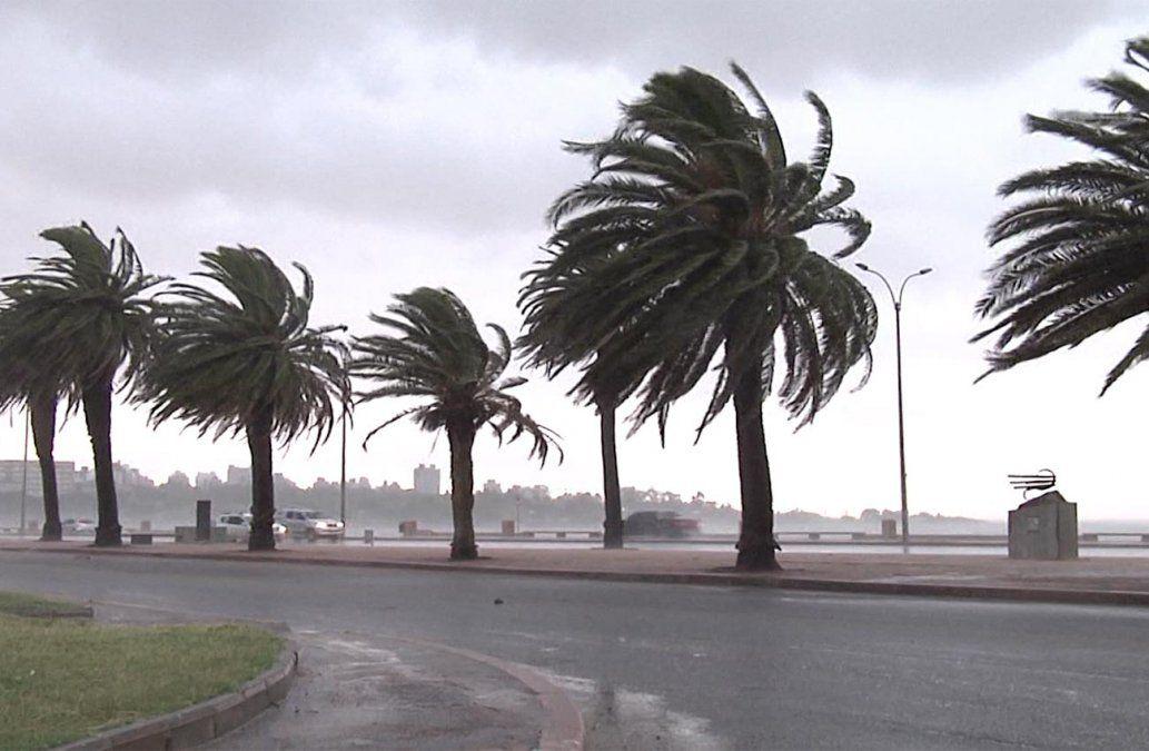 Llega el temporal de Santa Rosa: serán al menos tres días de mal tiempo