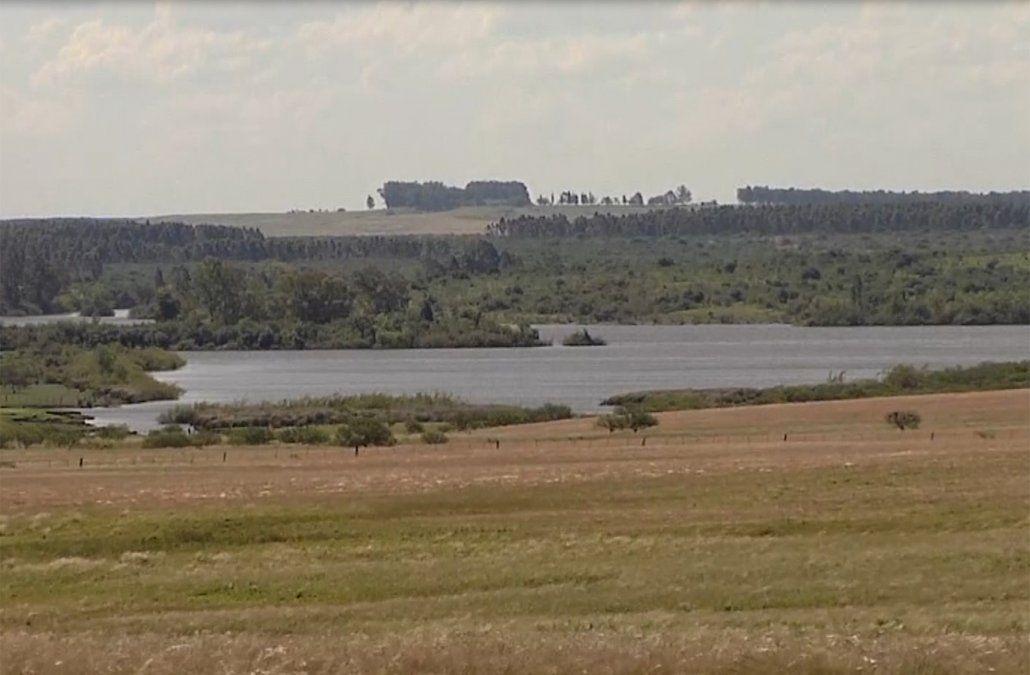 Informe de UPM afirma que no contaminará el Río Negro