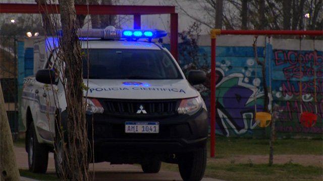 Fiscalía resuelve este lunes si ejecuta al perro que mató a su dueña en Casavalle