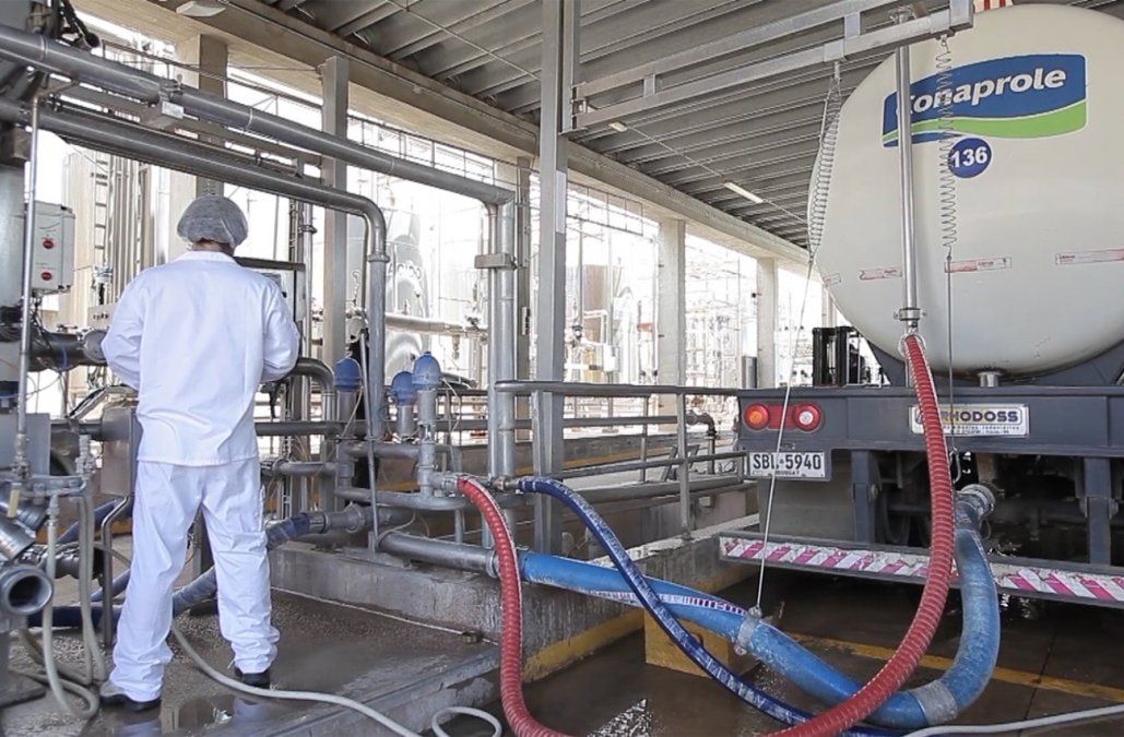 Grupo de productores lecheros propone vender Conaprole y culpa al sindicato
