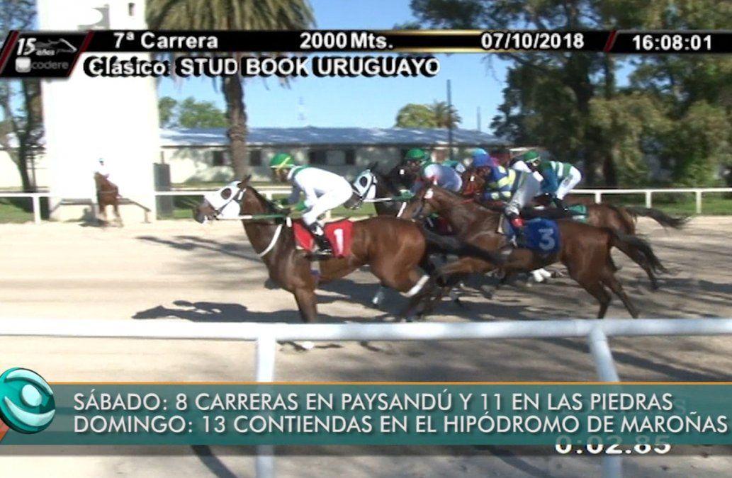 En Maroñas se realizó el lanzamiento del Torneo Pablo Falero