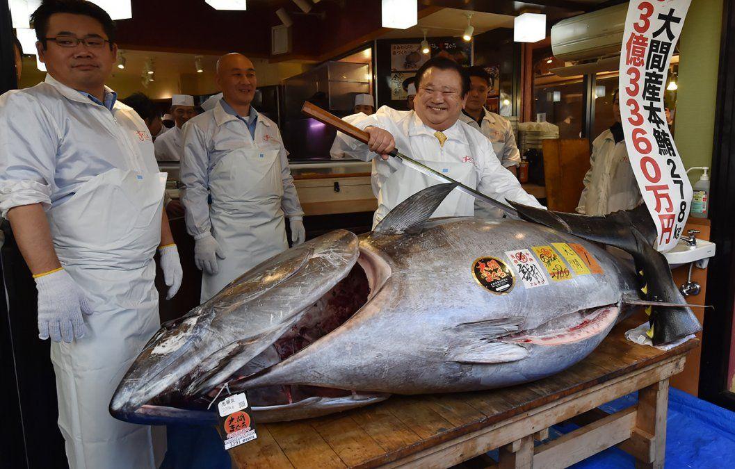 Un atún gigante fue subastado en más de 3 millones de dólares en Tokio