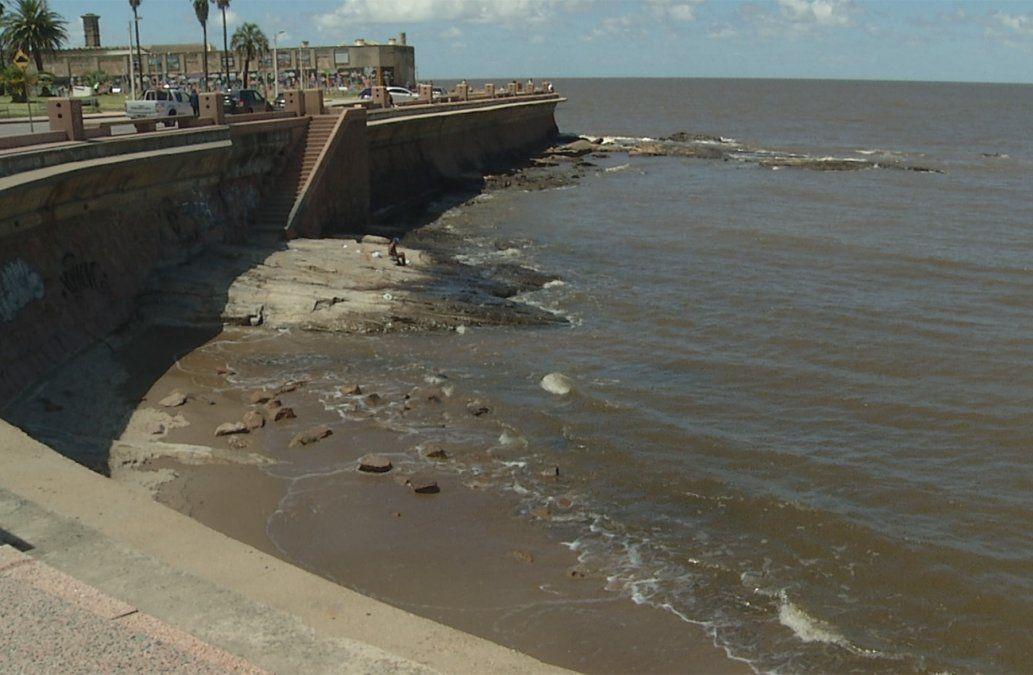 Bañistas intentaron rescatar a hombre que cayó al agua en Rambla de Montevideo