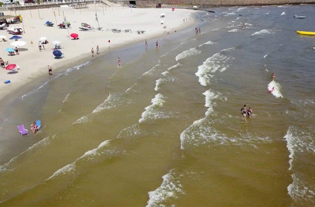Las cianobacterias afectan a Piriápolis y varias playas de Maldonado