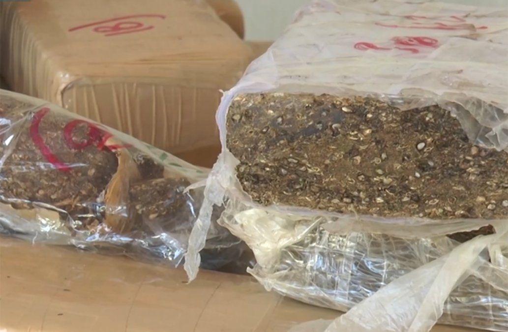 Cinco detenidos por venta de drogas en Canelones, entre ellos un contador