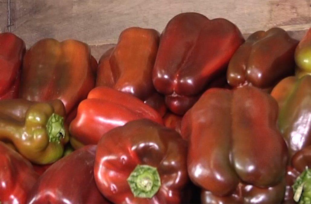 Precios de algunas verduras están 50% por encima de lo normal por efecto del clima