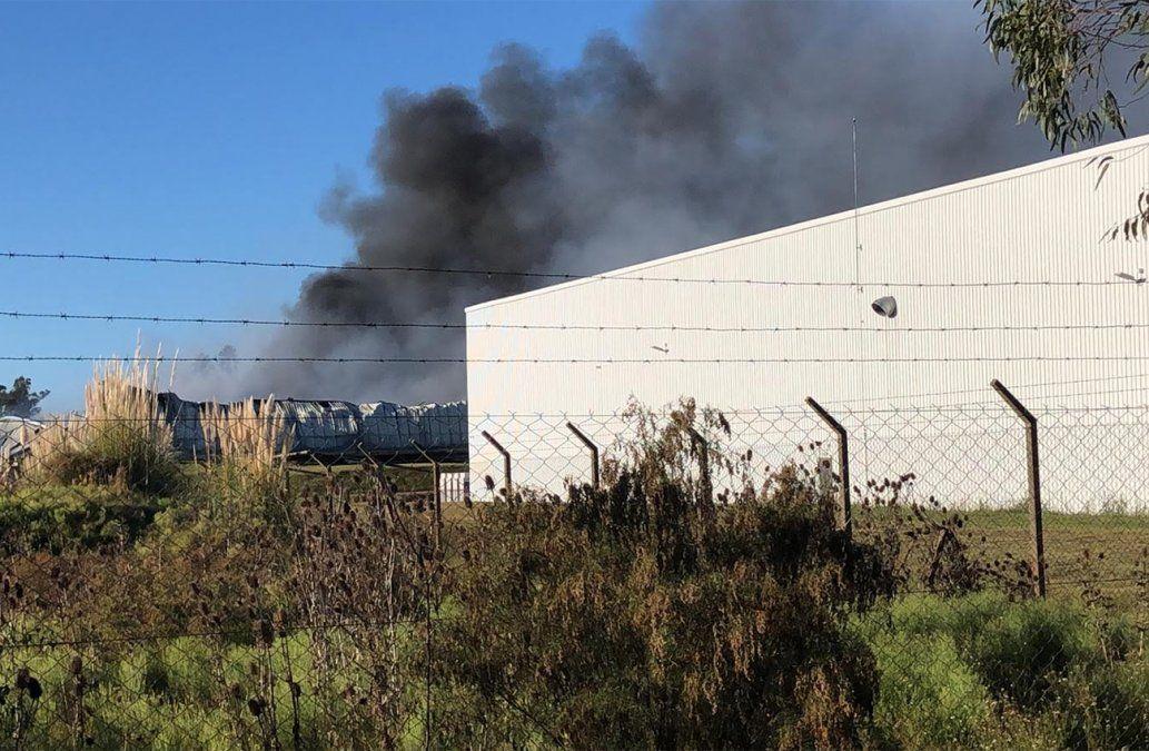 Fuego controlado en Costa Logística: se quemaron 7.000 m2
