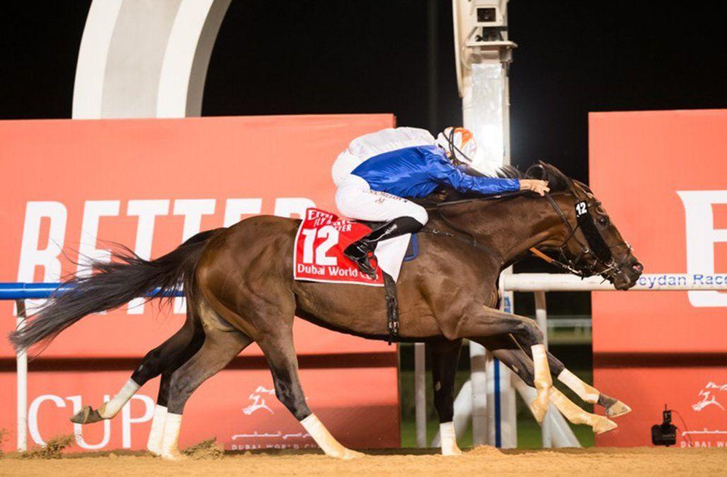 Foto: www.emirateracing.com.