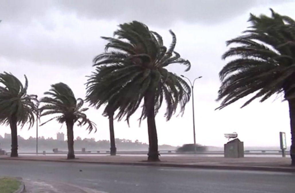 Anuncian vientos fuertes para el sur y este del país desde este martes de noche