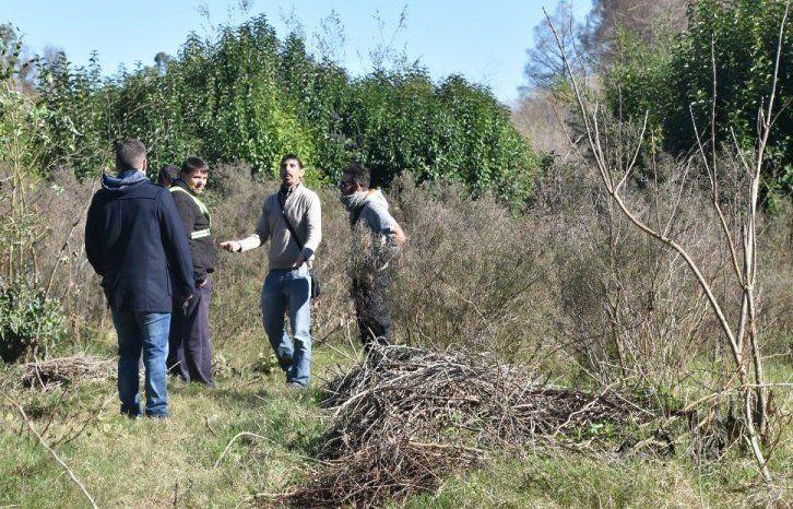Encontraron una mujer muerta entre arbustos en un monte en la ciudad de San José