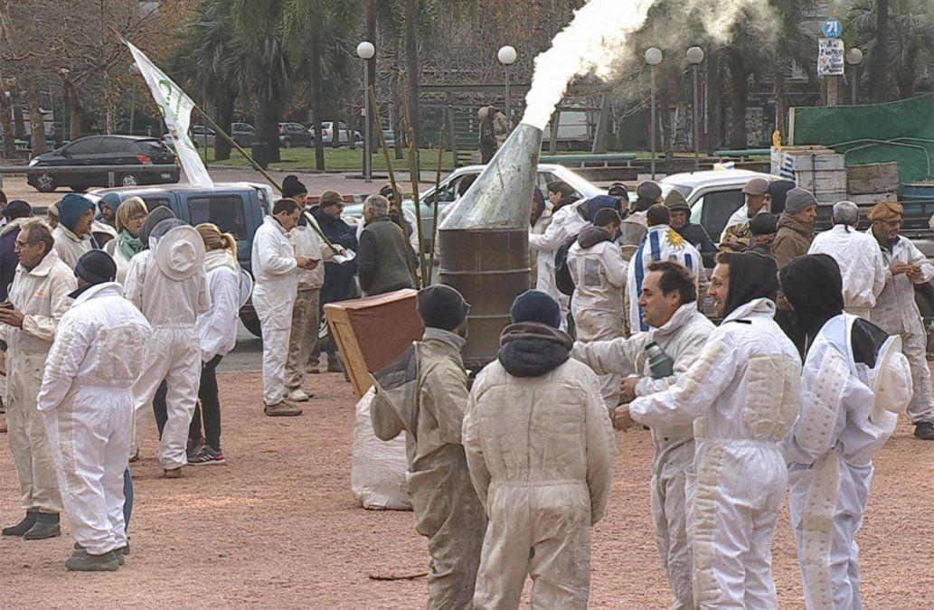 Apicultores de todo el país se movilizan frente al Legislativo y exigen sanciones por agrotóxicos