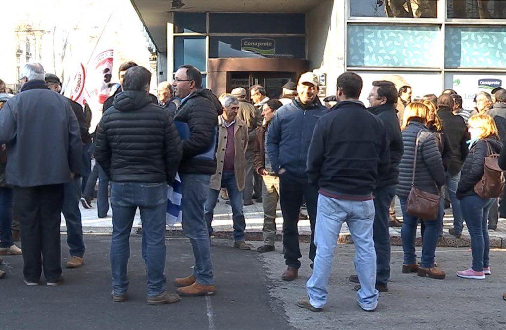 Productores lecheros se movilizaron y reclaman medidas a Conaprole y a Vázquez