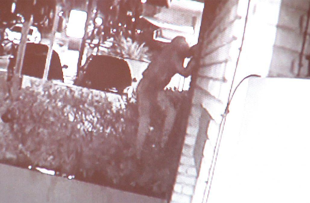 Copamiento en Punta Carretas: maniataron a las dueñas de casa