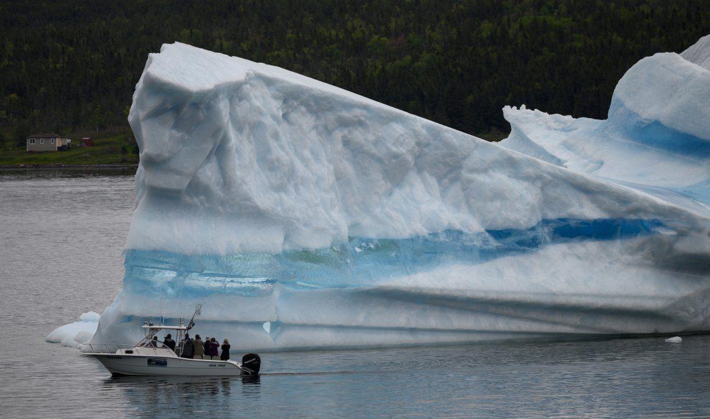 El guía turístico y ex pescador Barri Strickland dirige su barco cerca de un iceberg en la costa de Kings Point