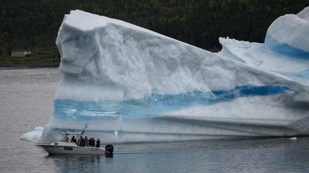El guía turístico y ex pescador Barri Strickland dirige su barco cerca de un iceberg en la costa de Kings Point, en Newfoundland, Canadá