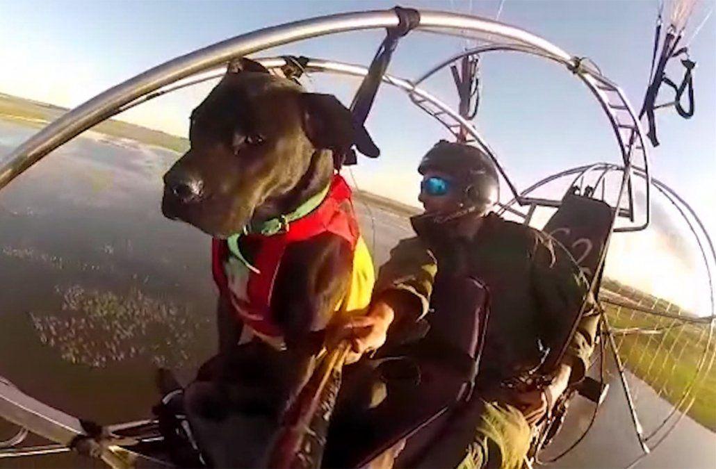 Un argentino recorre América del Sur en parapente acompañado por su perro