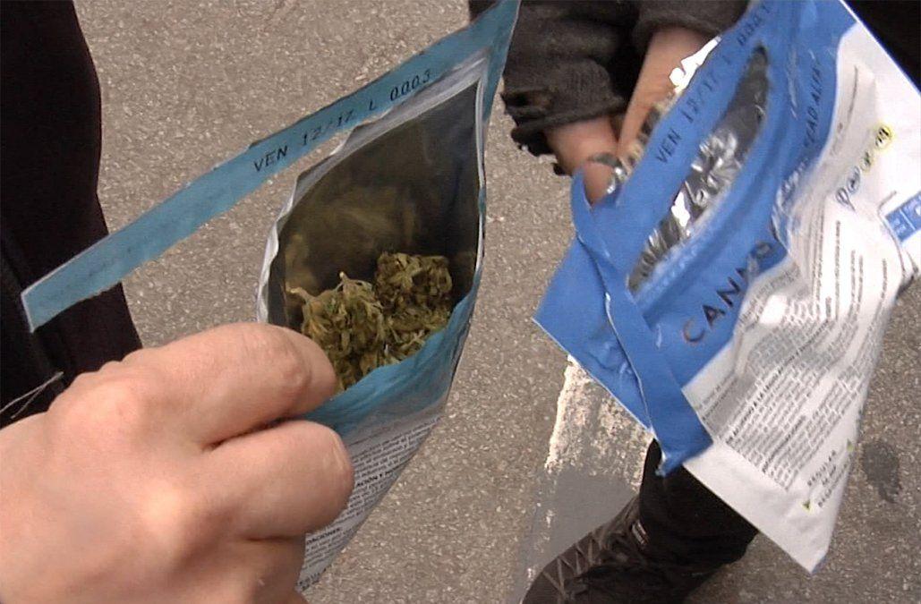 Gobierno preseleccionará a tres nuevas empresas para producir cannabis