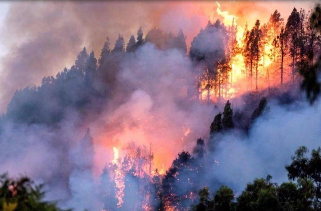Resultado de imagen para incendios amazonas