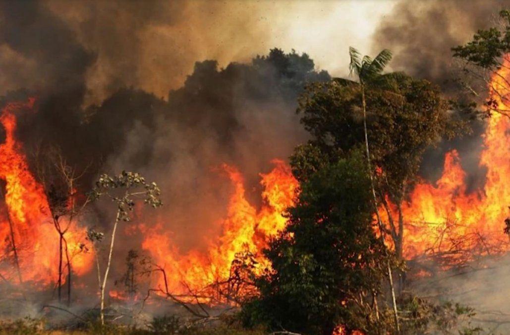 Brasil bajo presión internacional por los incendios en la Amazonía