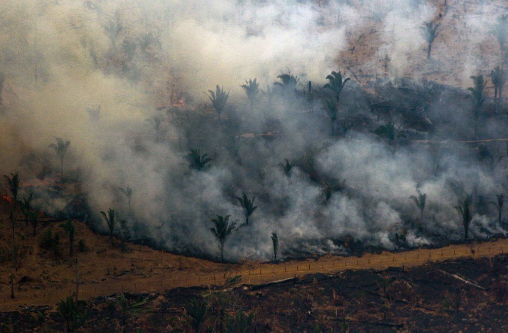 Humo de los incendios en el Amazonas llegó a Uruguay, según Inumet