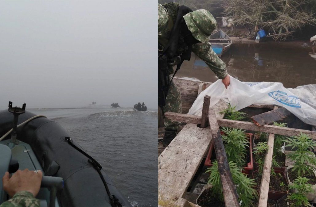 Detuvieron un barco con 10 plantas de marihuana que navegaba por la Laguna Merín