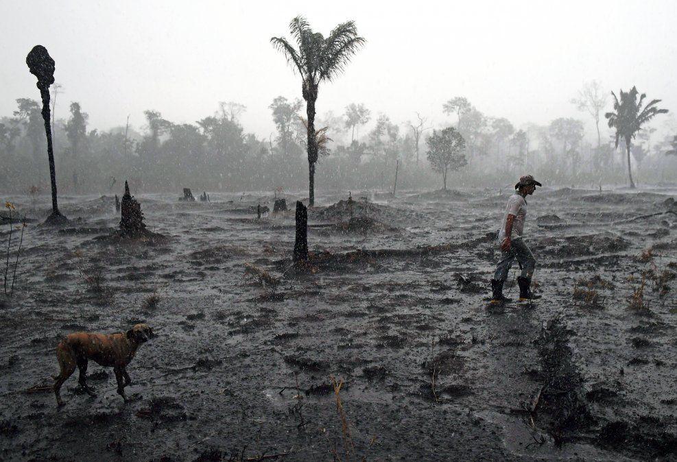 Un granjero brasileño y su perro caminan a través de un área quemada en la selva de la Amazonia