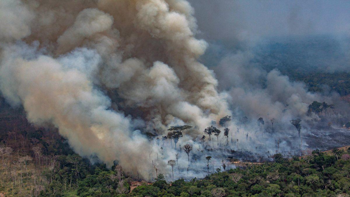 Una captura aérea de Greenpace muestra el humo de los incendios en el Amazonas, en el noroeste de Brasil.
