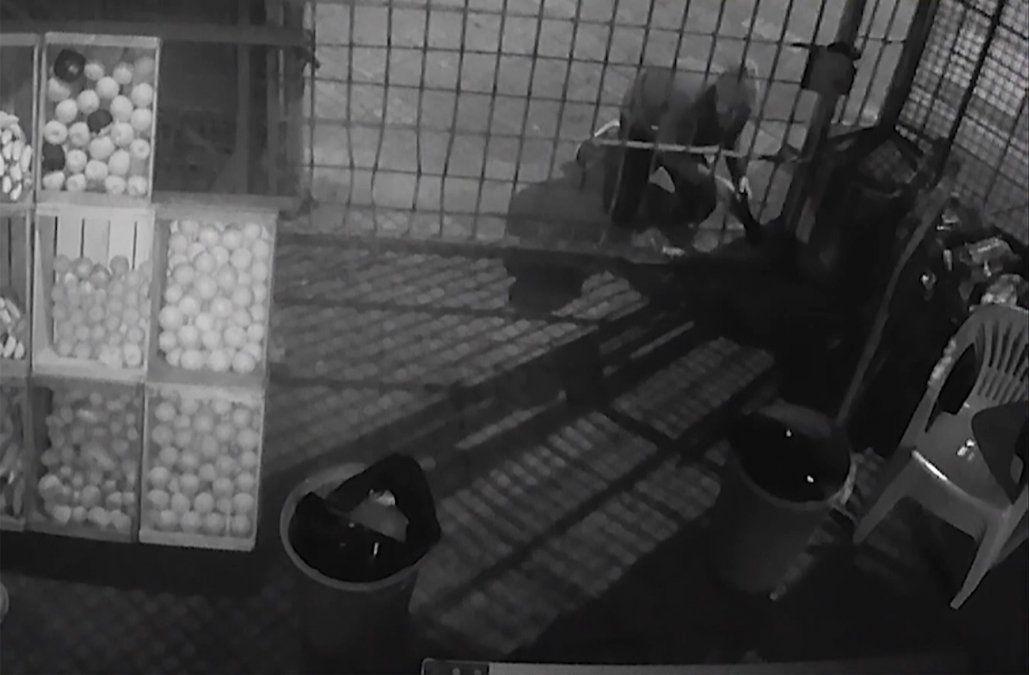 Buscan a ladrón que usa un gato hidráulico para robar en comercios de Parque Batlle