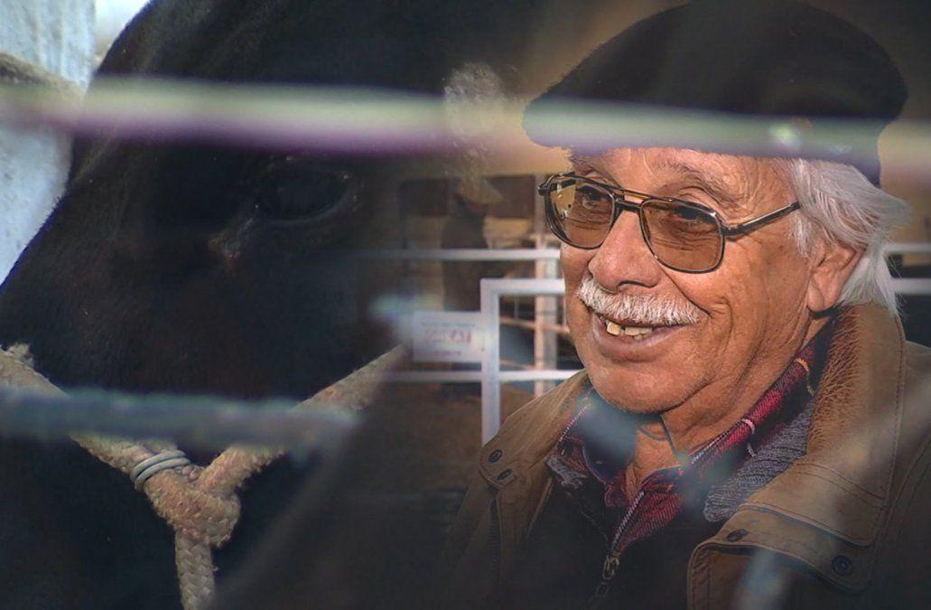 Octavio presentó su cría de Angus en la Expo Prado 2019