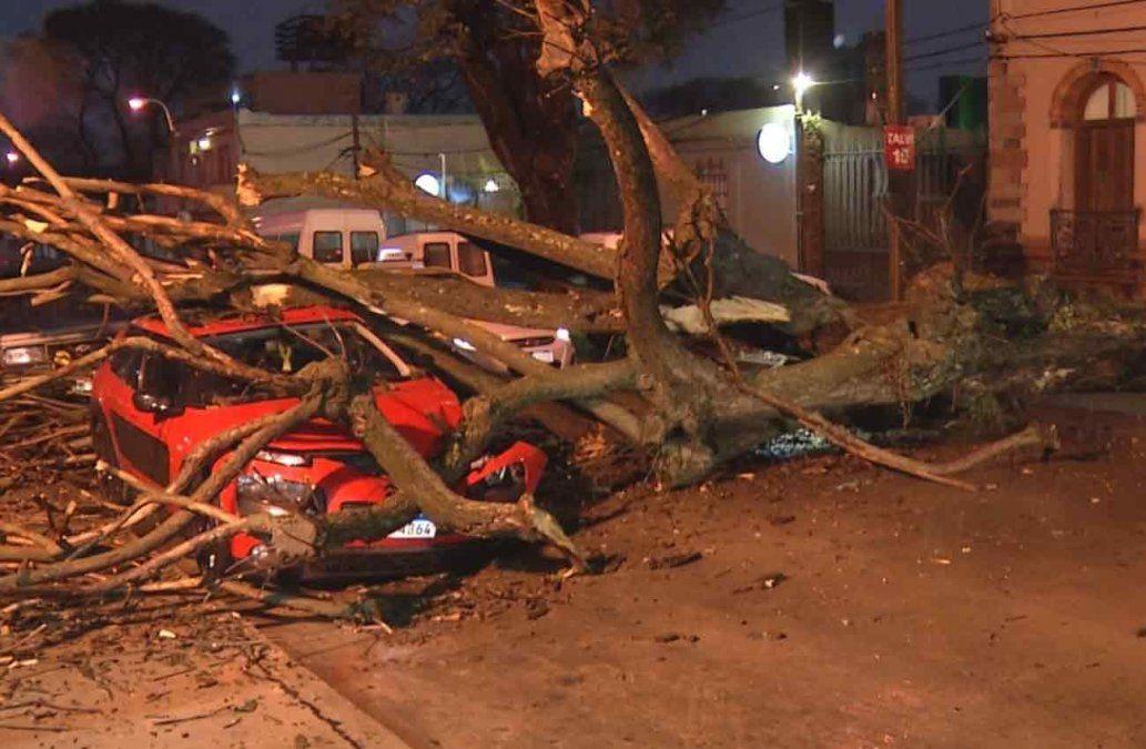 Un árbol cayó arriba de un auto como consecuencia de la tormenta