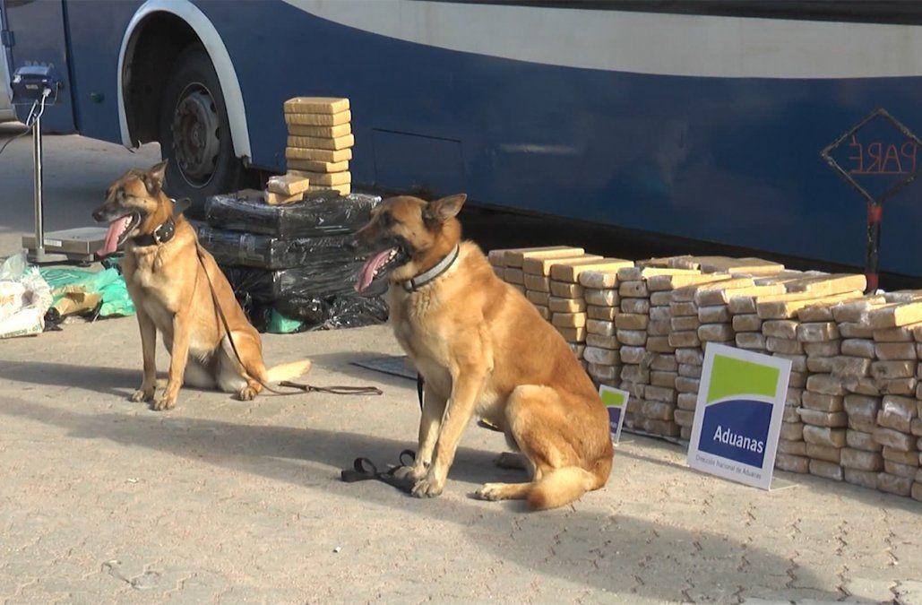 Condenaron y expulsaron a los 23 pasajeros paraguayos que venían con 931 kilos de marihuana