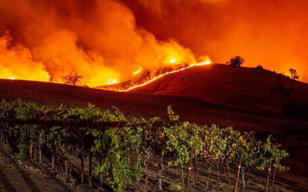 Las llamas se acercan a las colinas de viñedos durante el incendio de Kincade