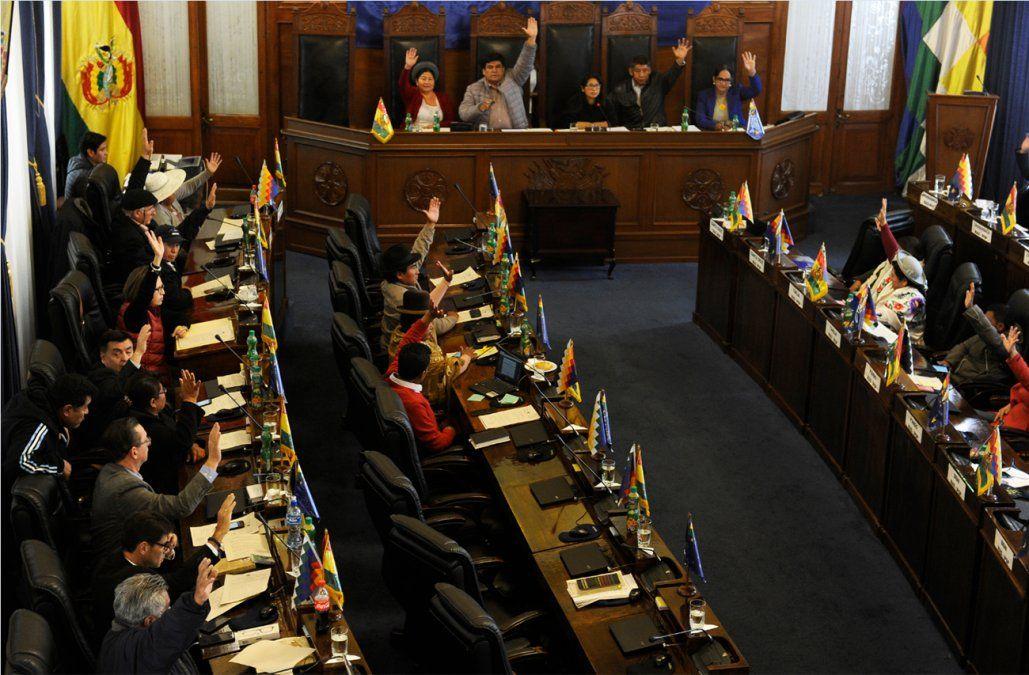 Senado dio luz verde a las nuevas elecciones generales en Bolivia
