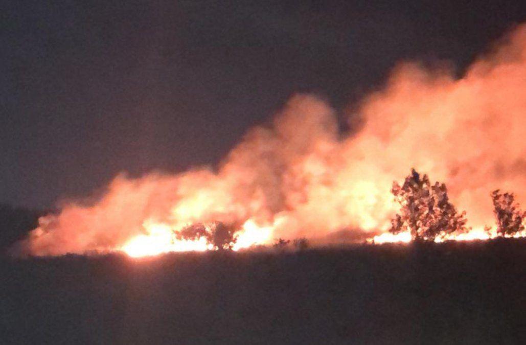 Incendio de campo afectó los humedales del Santa Lucía, cerca del Parque Lecocq