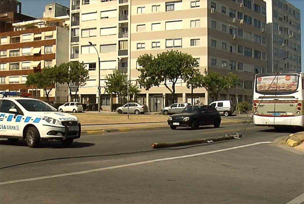 Una mujer falleció luego de que un poste de luz cayera en la vereda y la golpeara