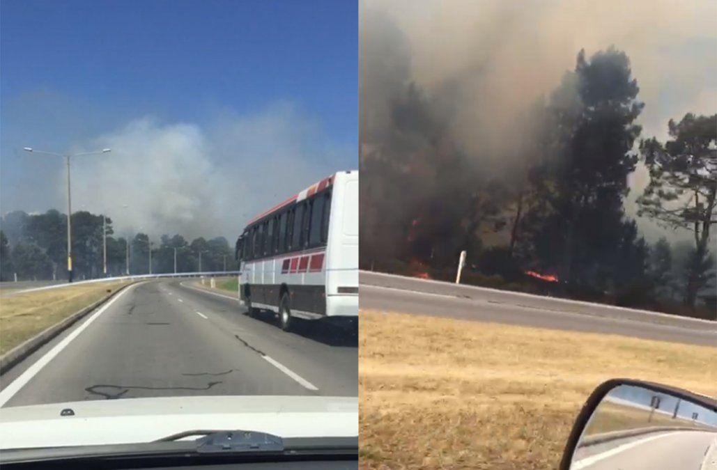 Incendio fuera de control afecta la zona del Autódromo de El Pinar