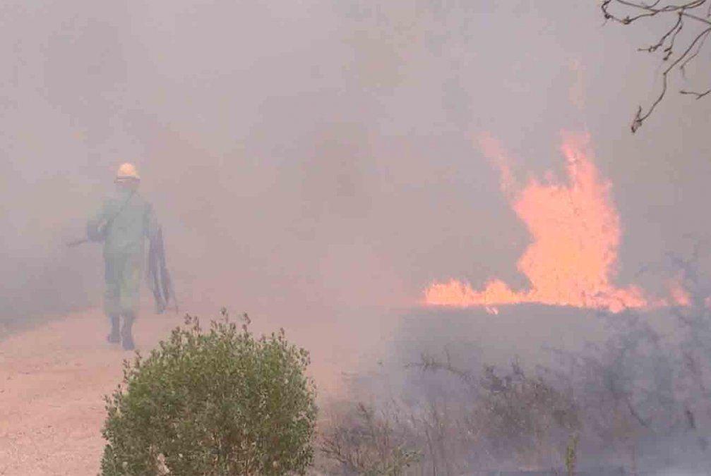 17 viviendas y 1.000 hectáreas afectadas por el fuego en La Esmeralda
