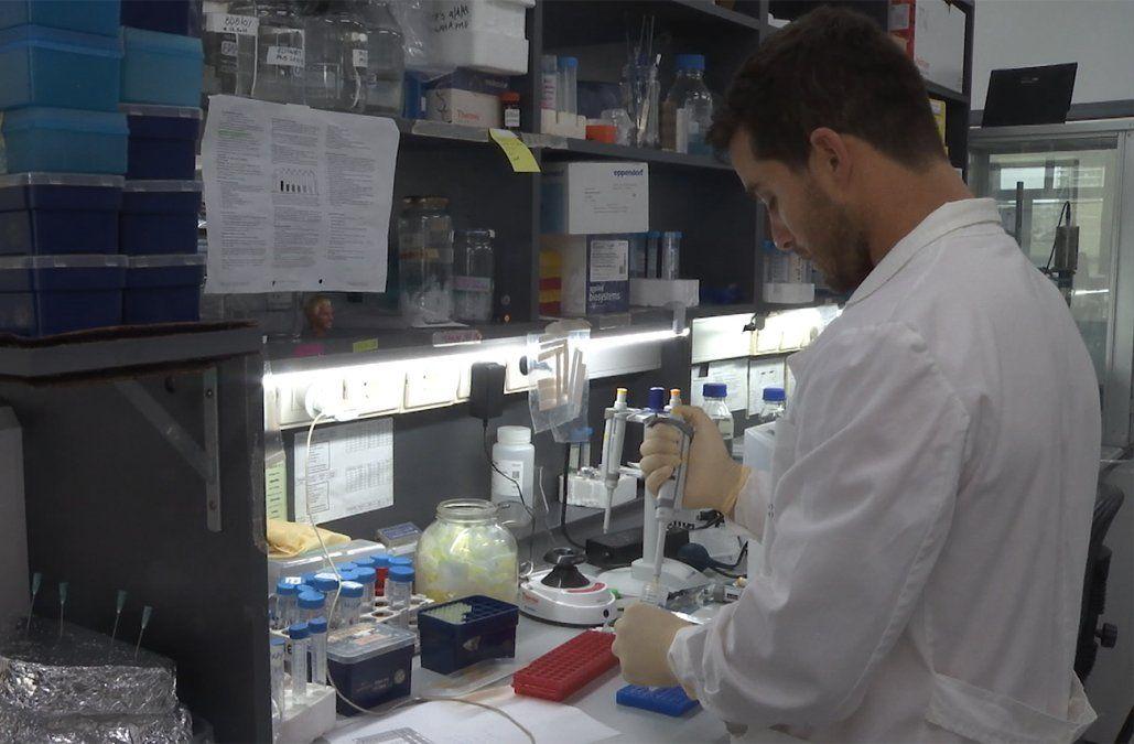 Instituto Pasteur de Montevideo desarrolla un compuesto que previene la obesidad