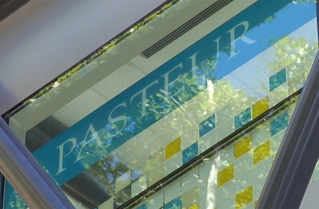 35 funcionarios del Pasteur cesados por carné de salud falsos