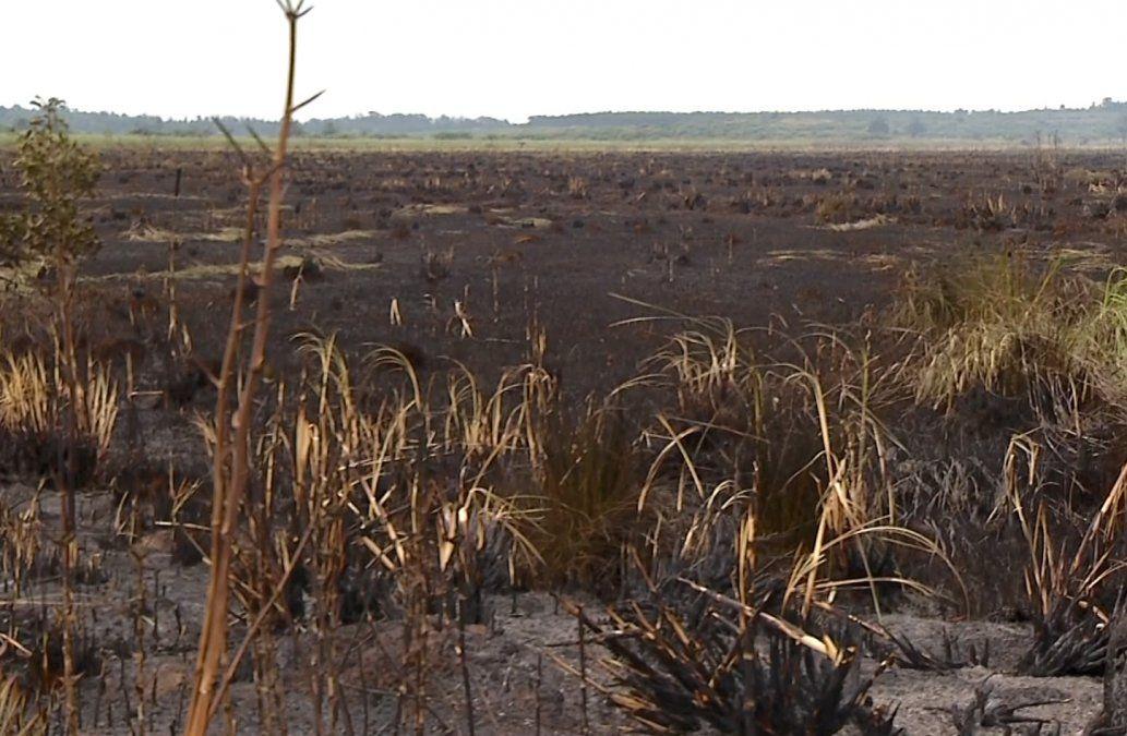 Incendio en Melilla se reavivó pero ya fue controlado: se quemaron más de 400 hectáreas