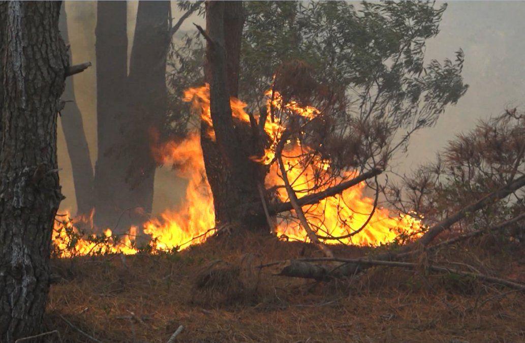 Incendios en esta temporada fueron los peores de la década