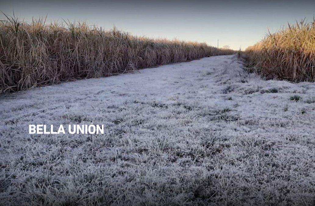 Ola de frío llega este miércoles a mínimas de 5 grados bajo cero y más