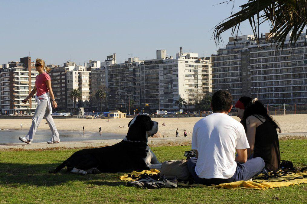 Buen tiempo en todo el país y temperatura máxima de 23ºC en Montevideo
